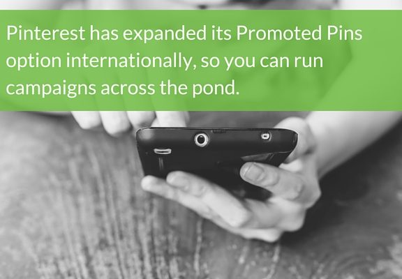 Pinterest Promoted Pins Campaign