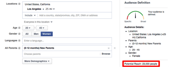 Facebook Ad Manager setting up an audience