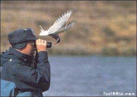 a man looking through binoculars at a bird